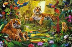 Tigers in the Jungle. Click to view this product