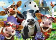 Cows are Udderly Splendid (Selfies) (HOL770687), a 500 piece Holdson jigsaw puzzle.