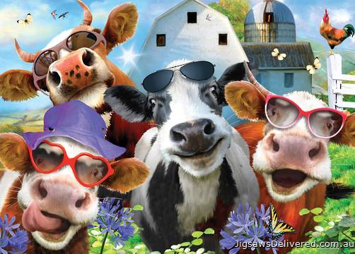 Cows are Udderly Splendid (Selfies) (HOL770687), a 500 piece jigsaw puzzle by Holdson.