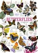 Butterfly Collection (COB80015), a 1000 piece Cobble Hill jigsaw puzzle.