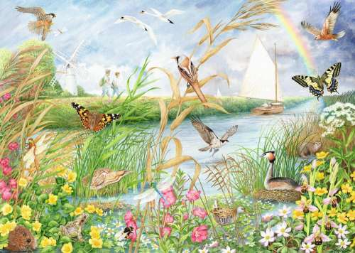 Norfolk Broads (JUM11208), a 1000 piece jigsaw puzzle by Jumbo. Click to view larger image.