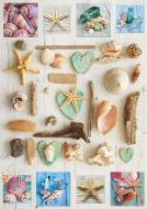 Sea Shell Collage (EDU17658), a 1000 piece Educa jigsaw puzzle.