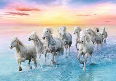Galloping White Horses. Click to view this product