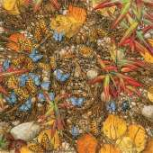 Butterflies - The Spirit Takes Flight (SUN74411), a 1000 piece Sunsout jigsaw puzzle.