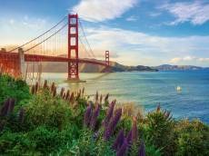 Golden Gate Bridge S.... Click to view this product
