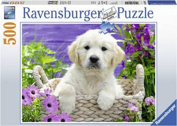 Sweet Golden Retriever (RB14829-5), a 500 piece jigsaw puzzle by Ravensburger.
