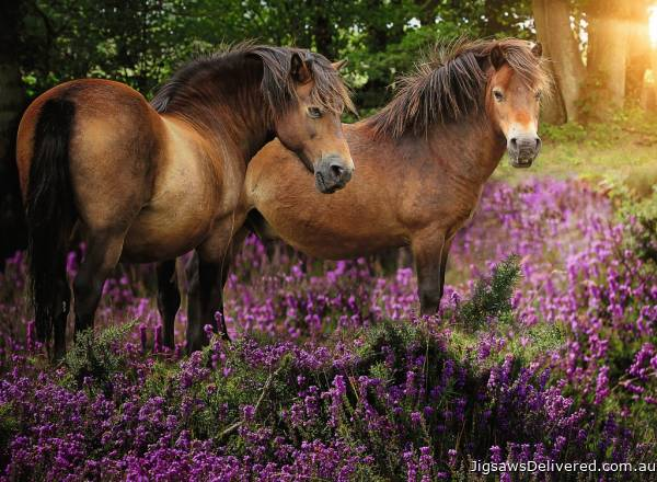 Ponies in the Flowers (RB14813-4), a 500 piece jigsaw puzzle by Ravensburger.