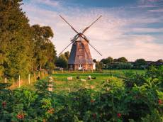 Windmill on the Balt.... Click to view this product