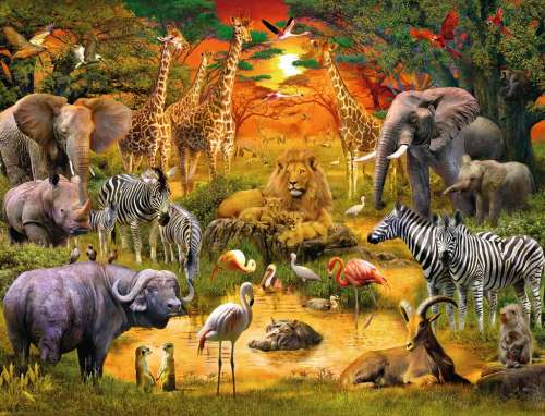 Gathering at the Waterhole (RB16702-9), a 2000 piece jigsaw puzzle by Ravensburger. Click to view larger image.