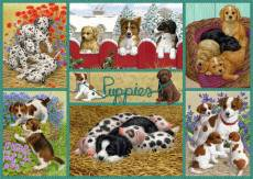 Happy Puppies (JUM11219), a 500 piece Jumbo jigsaw puzzle.