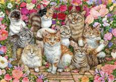 Floral Cats. Click to view this product