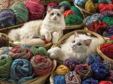 Ragdolls (Large Pieces). Click to view this product
