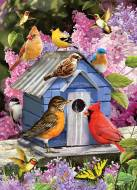 Spring Birdhouse. Click to view this product