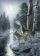Wolves by Moonlight. Click to view this product