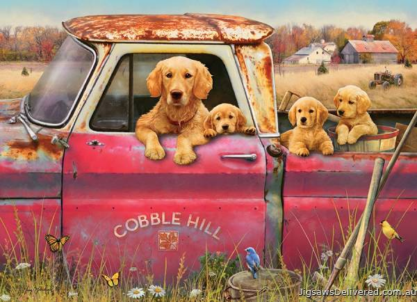 Puppies of Cobble Hill Farm (COB80116), a 1000 piece jigsaw puzzle by Cobble Hill.