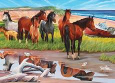 Sable Island Ponies,.... Click to view this product