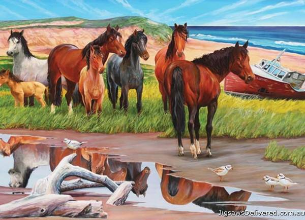 Sable Island Ponies, Canada (COB50701), a 2000 piece jigsaw puzzle by Cobble Hill.