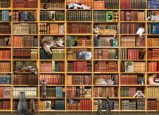 The Cat Library. Click to view this product