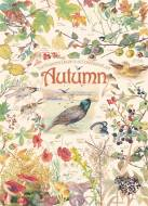 Autumn (Country Diary) (COB80213), a 1000 piece Cobble Hill jigsaw puzzle.
