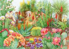 Flower Show: Desert .... Click to view this product
