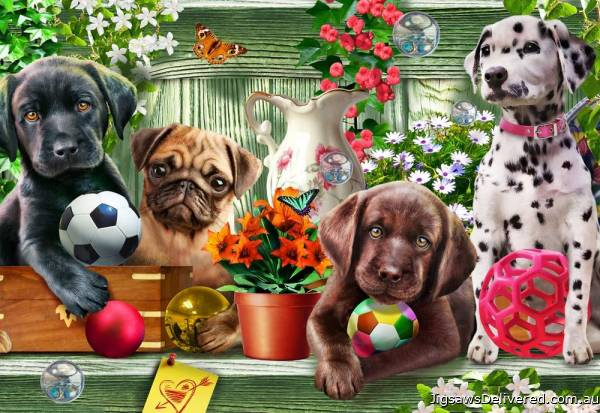 Shelf Puppies (HOL771936), a 300 piece jigsaw puzzle by Holdson.