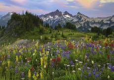 Tatoosh Mountains, W.... Click to view this product