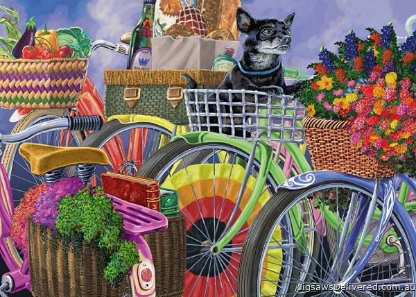 Bicycle Group (Large Pieces) (RB14995-7), a 300 piece jigsaw puzzle by Ravensburger.