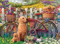 Cute Dogs in the Garden. Click to view this product