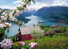 Cruise Norway. Click to view this product