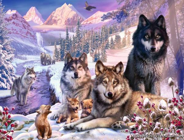 Wolves in the Snow (RB16012-9), a 2000 piece jigsaw puzzle by Ravensburger.