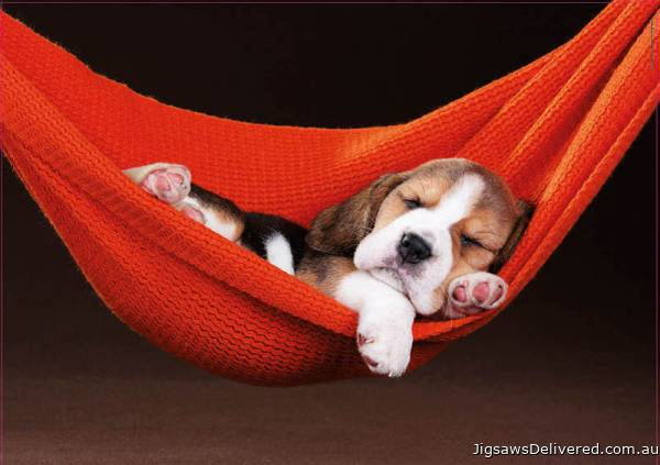 Puppy Sleeping in the Hammock (EDU18477), a 500 piece jigsaw puzzle by Educa.