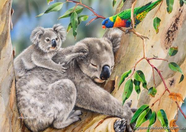 Koalas - Making New Friends (All Creatures Great and Small) (HOL773039), a 1000 piece jigsaw puzzle by Holdson.