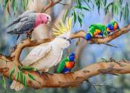 A Colourful Crowd (All Creatures Great and Small) (HOL773015), a 1000 piece jigsaw puzzle by HoldsonArtist Natalie Jane Parker. Click to view this jigsaw puzzle.