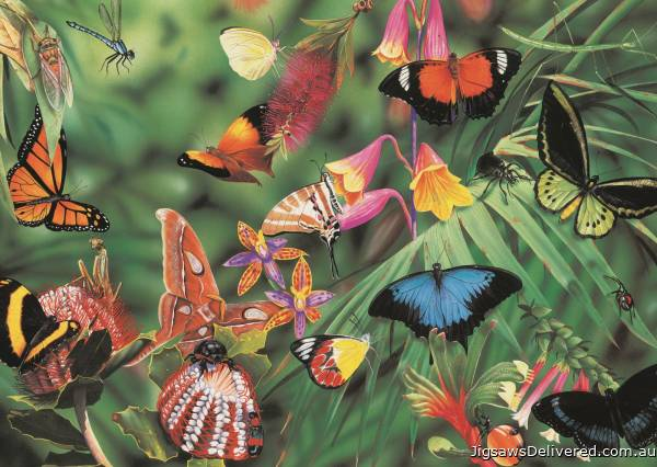 Butterflies and Beetles (BL02125-C), a 1000 piece jigsaw puzzle by Blue Opal.