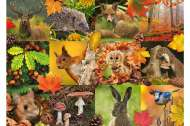 Autumn Animals (JUM18863), a 1000 piece jigsaw puzzle by Jumbo. Click to view this jigsaw puzzle.