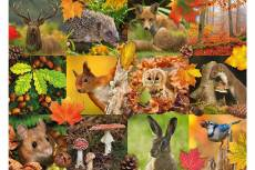 Autumn Animals. Click to view this product