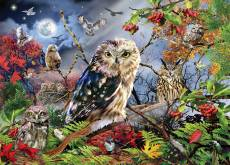 Owls in the Moonlight. Click to view this product