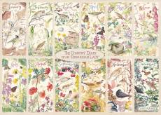 A Year of the Country Diary (JUM11305), a 1000 piece Jumbo jigsaw puzzle.
