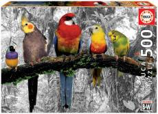 Birds in the Jungle. Click to view this product