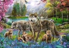 Wolf Family. Click to view this product