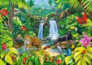 Tropical Forest (TRE27104), a 2000 piece jigsaw puzzle by Trefl. Click to view this jigsaw puzzle.