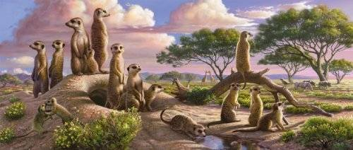 Adorable Meerkats (Panorama) (RB12649-1), a 200 piece jigsaw puzzle by Ravensburger.