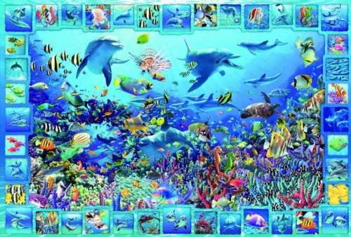 Dolphin Kingdom (EDU14828), a 5000 piece jigsaw puzzle by Educa. Click to view larger image.