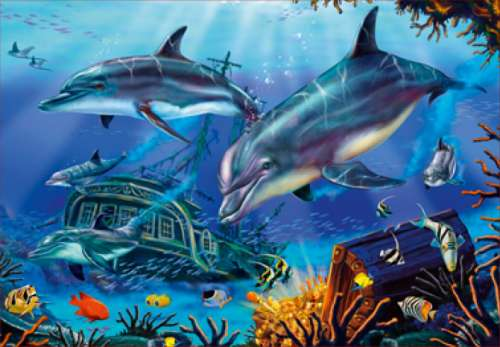 Sunken Treasure (Dolphin Explorers) (JUM13604), a 1000 piece jigsaw puzzle by Jumbo. Click to view larger image.