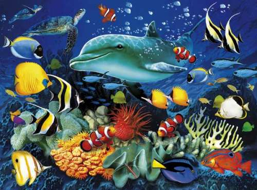 Dolphin Reef (3D effect) (CLE 39186), a 1000 piece jigsaw puzzle by Clementoni. Click to view larger image.