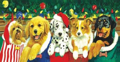 Stocking Puppies (SUN52626), a 500 piece jigsaw puzzle by Sunsout. Click to view larger image.