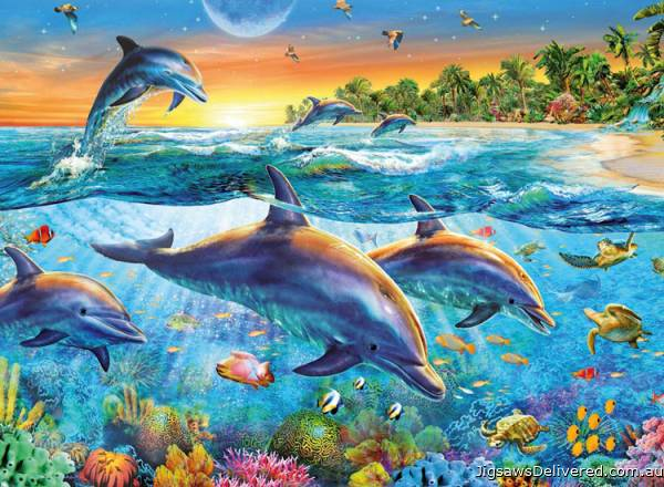Dolphin Cove (RB14210-1), a 500 piece jigsaw puzzle by Ravensburger.