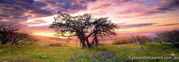 Oak Tree (Panorama) (HEY29472), a 2000 piece jigsaw puzzle by HEYE.