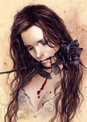 Dark Rose (Favole) (HEY29430), a 1000 piece jigsaw puzzle by HEYE. Click to view larger image.