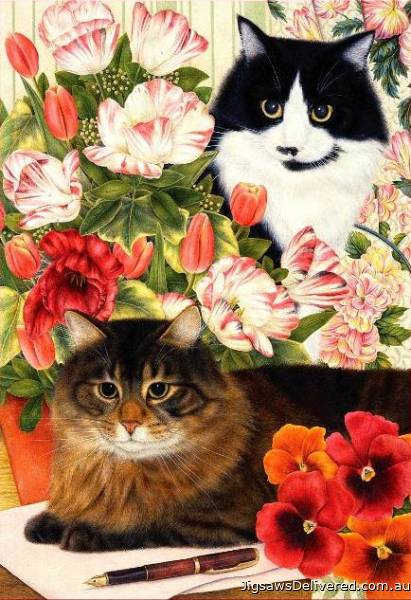 Desk Mates (Country Cats) (HOL092321), a 500 piece jigsaw puzzle by Holdson.